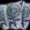 sunflowerbumblebee