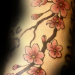 Cherry Blossoms on Upperarm