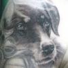deceased doggo