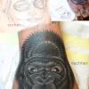 gorillacover